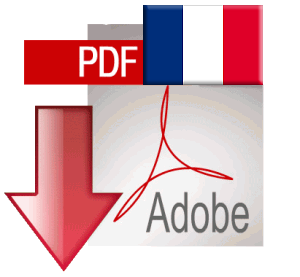 Download report in French
